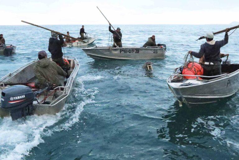 Beringo jūros medžiotojai